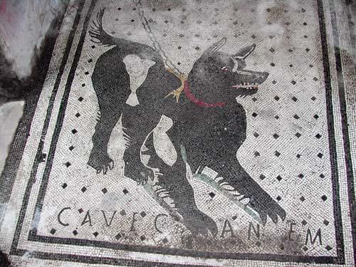http://designblog.nzeldes.com/wp-content/uploads/2010/12/Cave_Canem.jpg